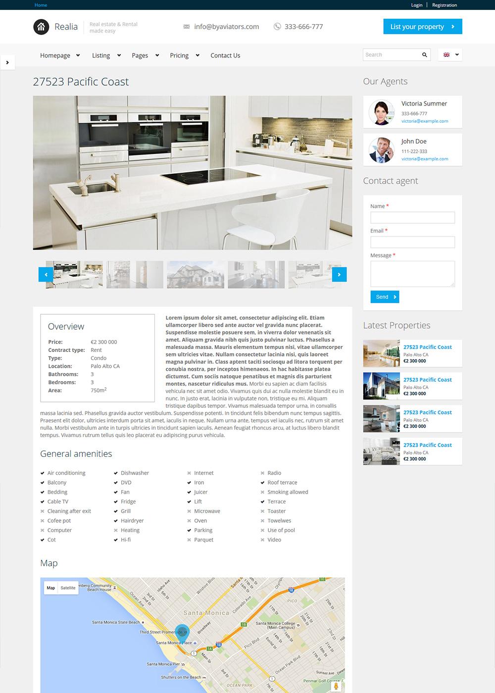 Web Site Template 29