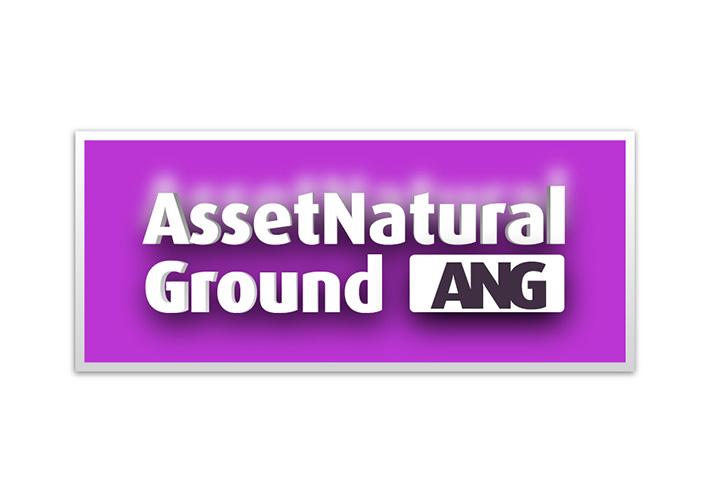 Design logo franciza imobiliara - ANG Holding - Bucuresti